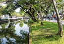 Walking the Chiang Mai City moat